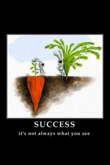 Successisnotalwayswhatyousee